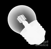 Intensity Prints - X-ray Of Lightbulb Print by Ted Kinsman