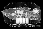 Ray Fish Prints - X-ray Of Mechanical Fish Print by Ted Kinsman