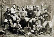 Baseball Bat Prints - Yale Baseball Team, 1901 Print by Granger