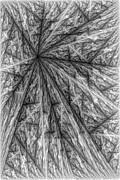 Yang Print by Kerry Mitchell