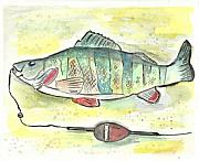 Mississippi River Painting Originals - Yellow Perch by Matt Gaudian
