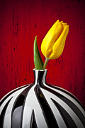 Old Vase Posters - Yellow Tulip In Striped Vase Poster by Garry Gay