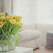 Y120817 Art - Yellow Tulips by Cindy Prins