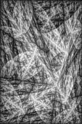 Yin Print by Kerry Mitchell