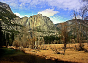 Yosemite Falls Metal Prints - Yosemite National Park Metal Print by Luiz Felipe Castro