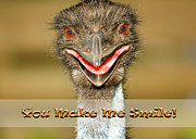 Emu Posters - You Make Me Smile Poster by Carolyn Marshall