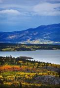 Colors Of Autumn Prints - Yukon Territory, Canada Print by Richard Wear