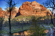Zion National Park Pyrography - Zion National Park by Barry Scharf