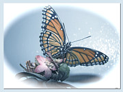 Butterfly Collection Design Print by Debra     Vatalaro