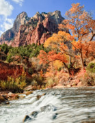 Southwestern Landscape Framed Prints - Zion National Park Utah Framed Print by Utah Images