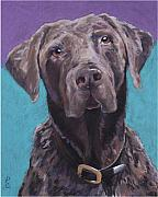 Labradors Framed Prints - 100 lbs. of Chocolate Love Framed Print by Pat Saunders-White