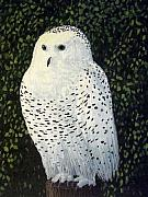 Snowy Night Paintings - Onlooker Snowy Owl by Cedric Colond
