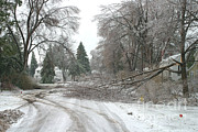 Winter Storm Photos - Ice Storm by Ted Kinsman