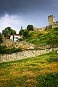 Trees Photos - Kalemegdan fortress in Belgrade by Elena Elisseeva