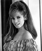 Teased Hair Prints - Raquel Welch, 1960s Print by Everett