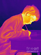 Human Being Posters - Thermogram Of A Boy Poster by Ted Kinsman