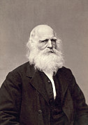 William Bryant Prints - William Cullen Bryant Print by Granger