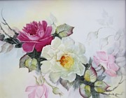 Hand Painted Porcelain Ceramics Posters - 1106b pink and white Roses Poster by Wilma Manhardt