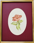 Canvas Ceramics - 1139a Hibiscus framed by Wilma Manhardt