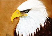 Hand Painted Ceramics Framed Prints - 1150b  Bold Eagle  4 Framed Print by Wilma Manhardt