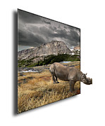 Out Of Bounds Prints - 116 Print by Peter Holme III