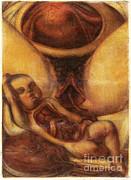 Anatomie Generale Des Visceres Print by Science Source