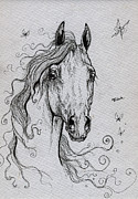 Horses Drawings - Arabian Horse Drawing by Angel  Tarantella