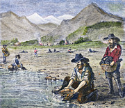 1850s Posters - California Gold Rush Poster by Granger
