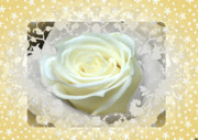 Twinkle Framed Prints - Wedding Rose Collection  Framed Print by Debra     Vatalaro