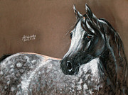 Arabian Horses Prints - Arabian Horse Print by Angel  Tarantella