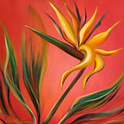 Gina Gray Paintings - Bird of Paradise by Gina De Gorna