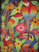 Kathleen Othon - Birds of Panama