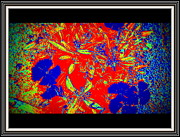 Night Tapestries - Textiles Metal Prints - Flowers Flowers And Flowers Metal Print by Anand Swaroop Manchiraju