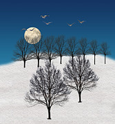 Winter Trees Posters - 1340 Poster by Peter Holme III