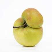 Healthy Eating Art - Apple by Bernard Jaubert