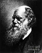 Theory Prints - Charles Robert Darwin, English Print by Science Source