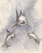Shark Drawings - Untitled by T Ezell