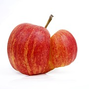 Raw Photos - Apple by Bernard Jaubert