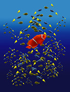Clown Fish Photo Metal Prints - 153 Metal Print by Peter Holme III