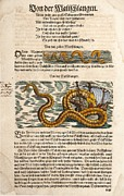 Sea Monster Mythology Prints - 1558 Gessner Sea Serpent & Ship Full Page Print by Paul D Stewart