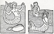 Sea Monster Mythology Prints - 15th Century German Woodcut Print Print by Cci Archives