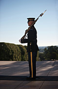 Respect Posters - Honor Guard At The Tomb Poster by Terry Moore