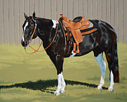 Pinto Horse Paintings - Untitled  by Lesley Alexander