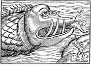 Sea Monster Mythology Prints - 16th Century Woodcut Print Print by Cci Archives