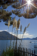 Relaxed Framed Prints - Lake Maggiore Framed Print by Joana Kruse