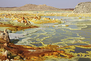 Barren Land Prints - Potassium Salt Deposits, Dallol Print by Richard Roscoe