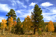 Mark Smith Prints - Rocky Mountain Fall Print by Mark Smith