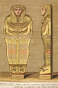 Egyptian Mummy Posters - 1724 First British Museum Sarcophagus Poster by Paul D Stewart