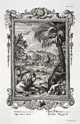 Creationist Framed Prints - 1731 Johann Scheuchzer Creation 6th Day Framed Print by Paul D Stewart