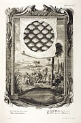 Sacred Artwork Framed Prints - 1731 Johann Scheuchzer Fish Denticles Framed Print by Paul D Stewart